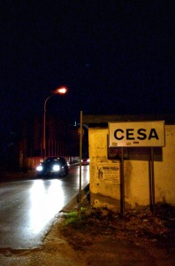 cesa1
